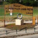 Protest impotriva transformarilor aduse spatiului public brasovean  – Parcul Schaeffler din Livada Postei