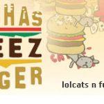 """""""I Can Has Cheezburger"""" face angajari"""