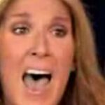 Celine Dion facts