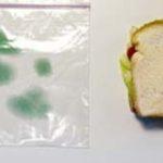 Sistem antifurt….sandwich