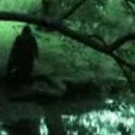 The Hunt For Gollum – trailer