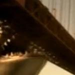 Mega Shark vs Giant Octopus – trailer