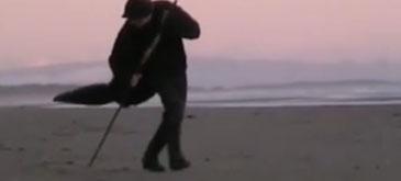 sand-dancer
