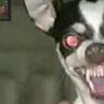Satan, sezi mumos!! (2)