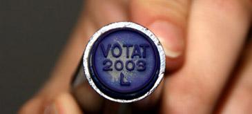 tu-cu-cine-votezi
