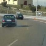 Bizon cu Jaguar