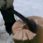 O metoda eficienta de a sparge lemne