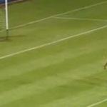 Asa se executa un penalty (2)