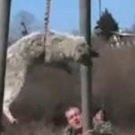 Si bulgarii sarbatoresc venirea primaverii in Martie