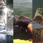 Links – 24.07.2012