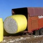 Un sofer de camion……