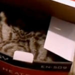 Mie imi plac cutiile (6)
