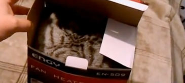 Mie imi plac cutiile (5)
