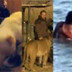 Links – 04.03.2013 & Ofertele saptamanii la eMag