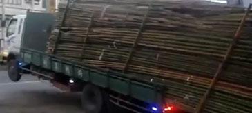 Un sofer de camion (2)