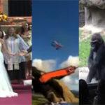 Links – 27.06.2013