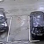Femeia la volan (52) – Iar am incurcat frana cu acceleratia