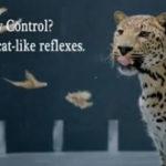 Jaguar vs. Chicken