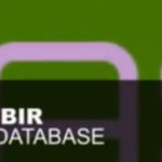 Jon O'Bir – Music Database (Original Mix)