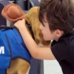 KLM ofera un serviciu Lost & Found original