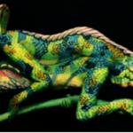 Fine Art Bodypainting (2)