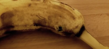 Astazi am vrut sa mananc o banana