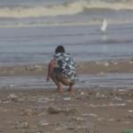 Si indienii au plaje frumoase