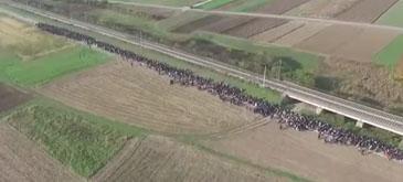 Toata lumea a uitat de (i)migranti