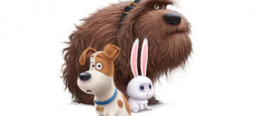 The Secret Life of Pets Official Teaser Trailer