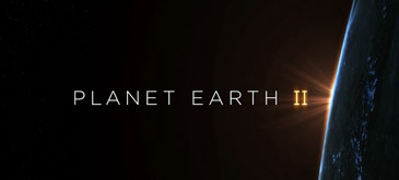 planet-earth-ii-official-extended-trailer-bbc-earth
